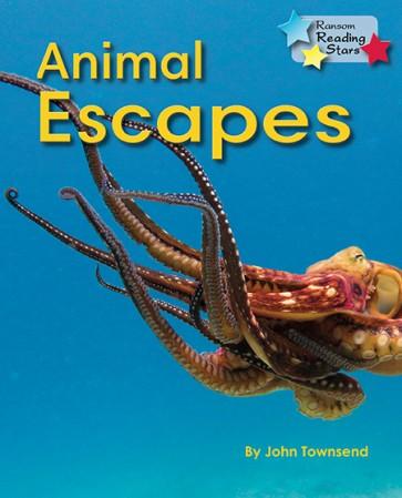 Animal Escapes