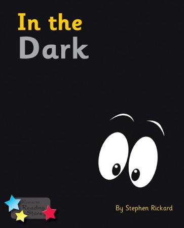In the Dark (6 Pack)