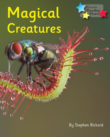 Magical Creatures (Pack 6)