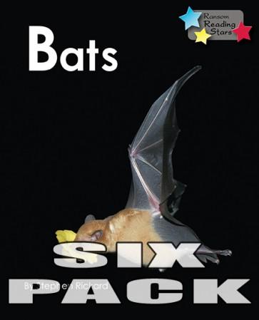 Bats (6 Pack)