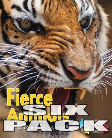 Fierce Animals (6 Pack)