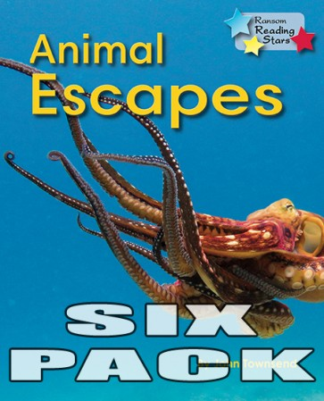 Animal Escapes (Pack 6)