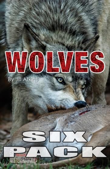 Wolves  (6 pack)