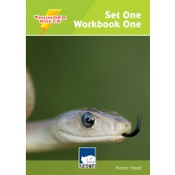 Thunderbolts Set 1 Workbook 1