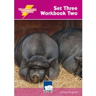 Thunderbolts Set 3 Workbook 2