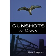 Gunshots at Dawn