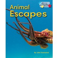 Animal Escapes