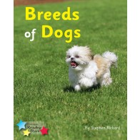 Breeds of Dogs (Pack 6)