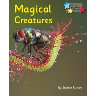 Magical Creatures (6 Pack)