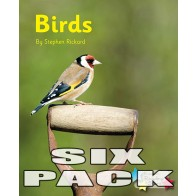 Birds (Pack 6)