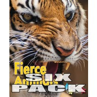 Fierce Animals (Pack 6)