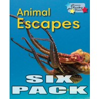 Animal Escapes (6 Pack)