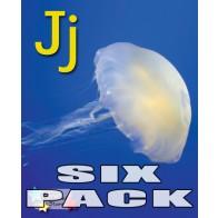 Alpha Stars Jj (6 pack)
