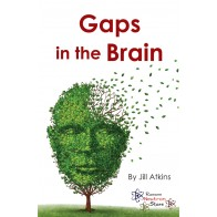 Gaps in the Brain