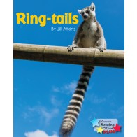 Ring-tails