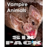 Vampire Animals  (6 pack)