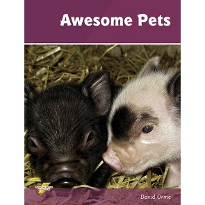 Awesome Pets
