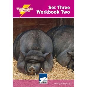 Thunderbolts Set 3 Workbook 2