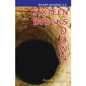 Sixteen Bricks Down  (Sharp Shades 2.0)